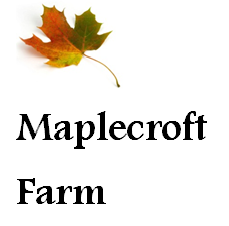 Maplecroft Logo